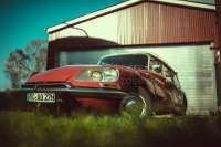 Blinker vorne links komplett. Passend für Citroen DS, ab Baujahr 1968. Der Blinker ist komplett aus Kunststoff. Blinkerglas: Orange. -1 - 37027 - Der Franzose