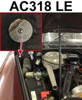 Typenschild Farbe: AC318 LE. Befestigt im Motorraum Citroen DS - 37888 - Der Franzose