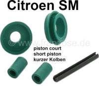 SM, Kupplungsgeberzylinder Dichtsatz (17,5mm Durchmesser, für kurzen Kolben). Passend für Citroen SM - 32473 - Der Franzose