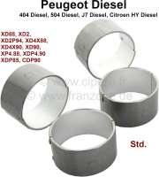 Pleuellager (kompletter Satz). Passend für Citroen HY Diesel. Peugeot 404 Diesel. Peugeot 504 Diesel, J7 Diesel. Motor: XD88, XD2, XD2P94, XD4x88, XD4x90, XD90, XDP4.88, XDP4.90, XDP85, XDP88, XDP90. Abmessung: Standartmaß. - 41416 - Der Franzose