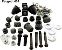 P 404, Vorderachs Rep-Satz komplett, für beide Seiten. Passend für Peugeot 404. - 73610 - Der Franzose