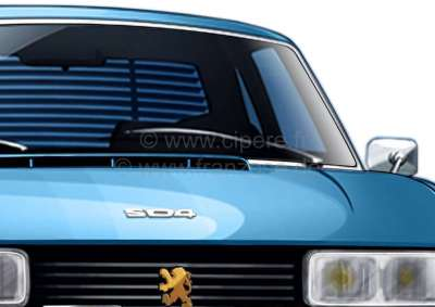 Peugeot Tail - Shutter. Suitable for Peugeot 504 coupe. Quickly installed (the brackets are only i