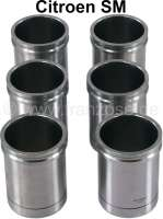 SM, liner blank. Suitable for Citroen SM (6x). The liner blank has