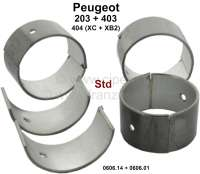 Connecting rod bearing (complete set) for fuel engines with 3 crankshaft bearings. Dimension: Standard dimension. Diameter crankshaft: 44,975 to 44,991mm. Wide one: 27mm. Suitable for Peugeot 203 (all engines). Peugeot 403 (all petrols). Peugeot 404 first serie (8CV), engine XC + XB2 (404 U6). Or. No. 0606.14 + 0606.01. - 71185 - Der Franzose