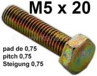 vis M5 x 20, bichromaté jaune | 21132 | Der Franzose - www.franzose.de
